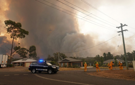 Australia's Wildfires Are a Global Concern